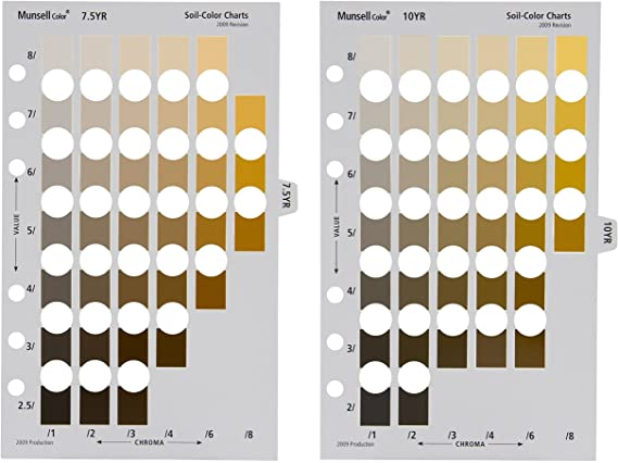 Munsell color book page layout. Pages are each an different hues with color chips of different values aligned vertically on the page and chroma arranged horizontally on the page