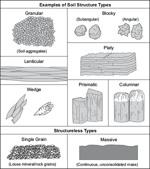 Examples of soil structure types